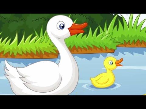 Ördekler Hep Vak Vak Der – Hayvan Seslerini Öğreten Şarkı